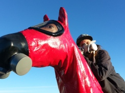 Close up of respirator-clad activist and horse sculpture.